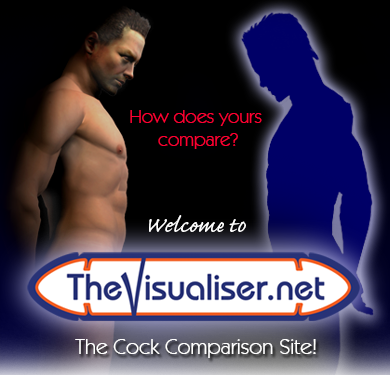 thevisualiser